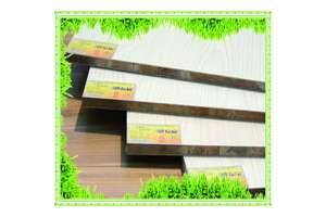 江西定南取缔无木材加工证 整顿超加工木材企业