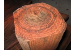 红木—红酸枝