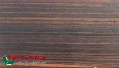 苏拉威西条纹乌木