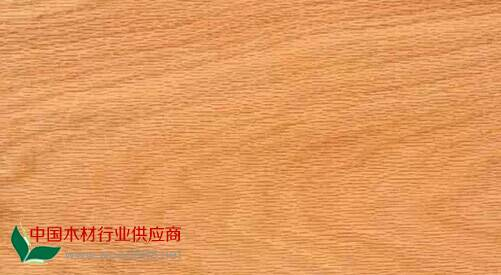 世界名贵木材之红橡木