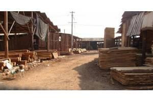 木材商面临艰难岁月 保存实力才是赢家