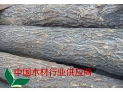 四川成都供应优质榆木原木