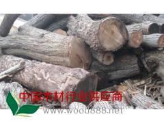 四川成都供应优质杏木原木