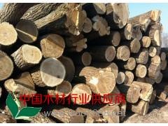 四川成都供应优质楸木原木