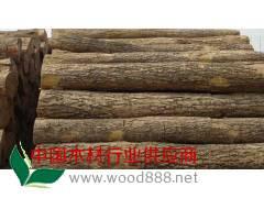 四川成都供应优质椴树原木