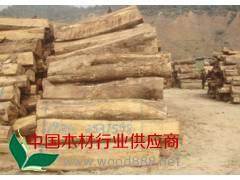 低价供应亚花梨原木优质非洲花梨