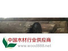 低价供应缅甸金丝楠木原木