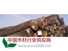 低价供应进口金车花梨原木