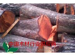 供应2千吨红椿木