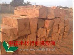 大量批发 亚花梨原木 真材实料 欢迎定制