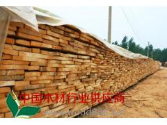 厂家直销 杨木毛边材 杨木直边材 杨木条 大量批发