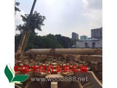 供应木结构 木雕 仿古门窗 挂件 花板 壁挂 屏风