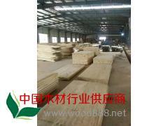 厂家直销拼板 实木拼版 白椿木拼板 长期大量批发