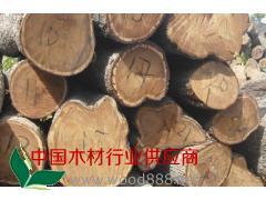 供应非洲花梨原木