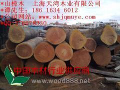 甘肃山樟木板材厂家 山樟木地板 山樟防腐木
