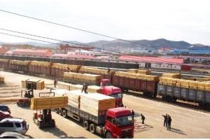 木材业未来发展方向 加大开拓新型原木市场