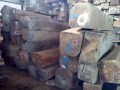 佛山市顺德区木然木业有限公司-缅花  花枝