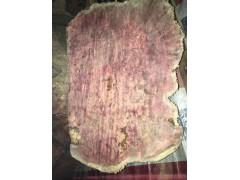 极品红豆杉树榴