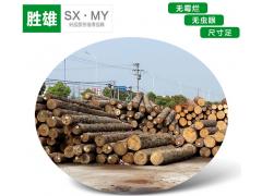 方条建筑木方 优质建筑木方