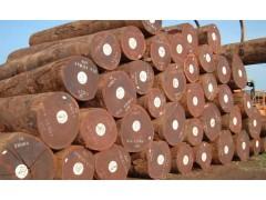 出售非洲沙比利原木