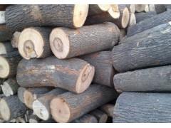 出售缅甸进口香樟木