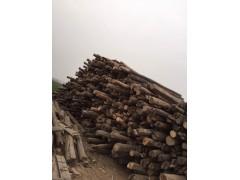 榆木原木-榆木原木价格-榆木原木批发