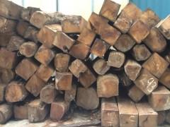 出售进口非洲花梨原木