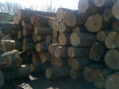 供应美国优质白橡原木地板材3/4面清 实木地板木皮刨切用料