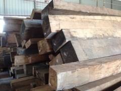 越南进口桧木原木批发