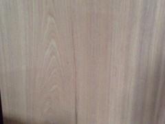 越南进口扁柏原木批发