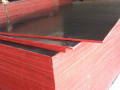 广西玉林建筑模板加工厂-产品图片
