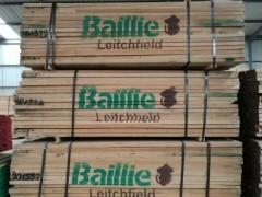 优质白蜡木板材批发