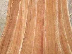 优质纯天然实木刨切卡丝拉木皮批发