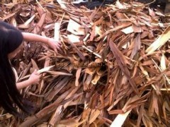 树皮桉木树皮真树皮管道装饰树皮木屋建筑材料