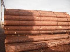 优质俄罗斯樟子松原木板材批发