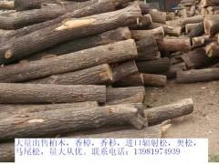 厂家直销 松柏木原木 家具材料 质细腻坚硬 防腐性强