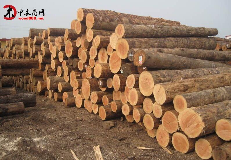 贵阳经开区清理整顿木材流通领域