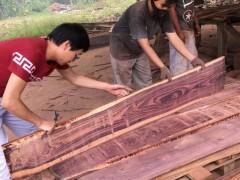 红木古典家具首选用料 精品印尼红酸枝 黑酸枝 各种规格可预订