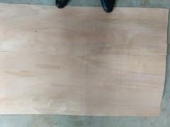 优质杂杨芯板 三合板 五合板首选用材