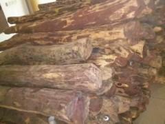大红酸梨枝原木  红木  红木家具木 酸梨枝书架