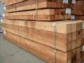 加拿大活石木业北京销售基地
