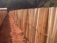 厂家大量供应桉木板 二级桉木板人造板
