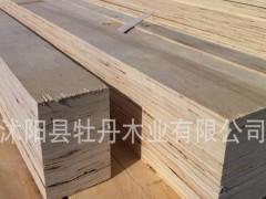 杨木LVL 杨木LVL包装板材 建筑模板厂家直销