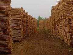 专业定制各种规格板材 杨木板材 桦木板材 樟子松刨光料 原木