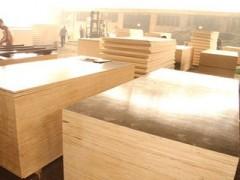 专业定制木胶板 建筑模板 辐射松胶板 花旗松胶 樟子松胶板