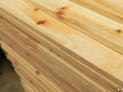 供应各种规格杉木 板材 方材厂家批发