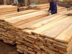供应各类家具板材 工程板材 欧洲榉木板材 方材