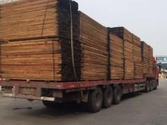 厂家专业批发大量进口非洲材 缅甸材 俄罗斯水曲柳等木材