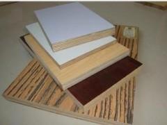 胶合板 杨木胶合板  桦木胶合板 松木胶合板 多层生态胶合板