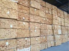 厂家热销 新西兰辐射松板材 规格齐全 货源充足